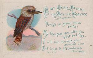 kooka postcard